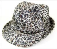DA_7899_Leopard
